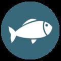 logo pêche camping port'land